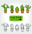 cactuses in flower pot vector image