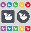 Organic food icon sign A set of 12 colored buttons vector image