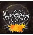 thanksgiving day greeting lettering phrase vector image