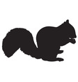 squireel silhouette vector image