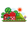 green tractor by the red barns vector image