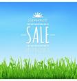Sale Wooden Board vector image