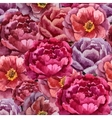 Beautiful watercolor pattern with peonies on white vector image