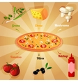 Pizza ingredients poster vector image