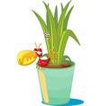plant pot vector image vector image