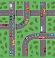 top view highways with cars and with trees vector image