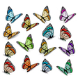 Set of realistic colorful butterflies vector image
