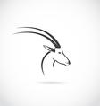 image of an deer head impala vector image vector image