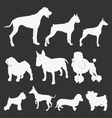 silhouette of dogs vector image