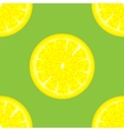 Sliced Citrus Seamless Pattern vector image