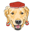 hipster dog Labrador Retriever vector image
