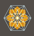 Star Tetrahedron print vector image