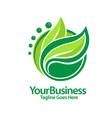 fgreen leaf logo vector image
