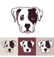 puppy dog head vector image