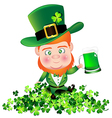 Irish man irish man hold beer on Shamrock for St vector image