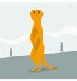Meerkat looking for space vector image