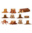 different shapes of stump trees vector image vector image
