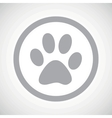 Grey paw sign icon vector image