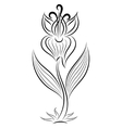 Doodle hand drawn gladiolus vector image