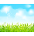 Blue sky and green grass vector image