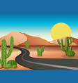 Desert ground with empty road vector image