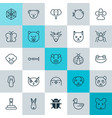 nature icons set collection of butterflyfish vector image