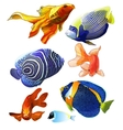 Set of Exotic Colorful Fish vector image