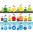 colorful apples vector image