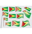 Guyana Flag vector image vector image