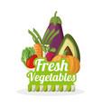 fresh vegetables nutrition food image vector image