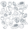 vegetables and fruits hand draw vector image
