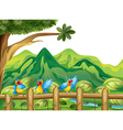 Three colorful parrots vector image vector image