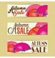 Sales labels vector image