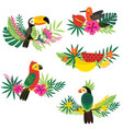 set of isolated decorative tropical design vector image