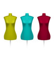 set of female tailors dummy mannequins vector image