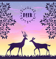 deer sunset vector image