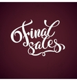 Final sales promotion calligraphical background vector image