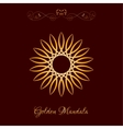 Gold Color Sun Mandala over dark brown vector image