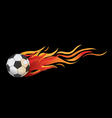 Ball fire vector image