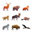 northern wild animals polygonal icons set vector image
