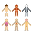 Body anatomy for kids vector image