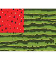 Watermelon flag as symbol of summer with red and vector image vector image
