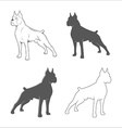 Silhouette of the dog vector image