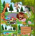 background scenes with wild animals and board vector image