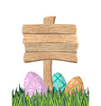 Happy Easter Green grass Colorful Easter eggs vector image