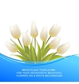 White tulip spring bouquet for sale vector image vector image