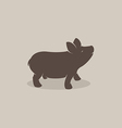 Pig 1P vector image vector image