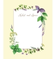 Watercolor hand painted frame with herbs vector image
