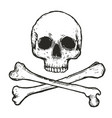 black and white skull and crossbones vector image
