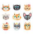 set of funny cartoon cats heads cats different vector image